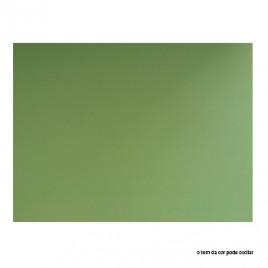 Cartolina 180gr 1 folha 50x65cm Verde Mondego (3N)